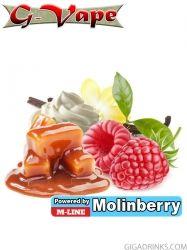 Indulge 10ml - концентриран аромат за овкусяване от Molinberry / G-Vape