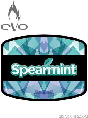 Spearmint 10ml / 12mg - никотинова течност Evo