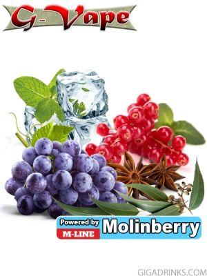 Red Fruits 10ml - концентриран аромат за овкусяване от Molinberry / G-Vape
