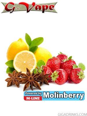 Shock 10ml - концентриран аромат за овкусяване от Molinberry / G-Vape