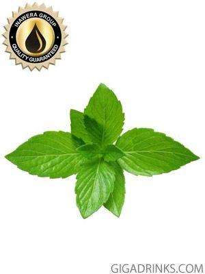 Menthol - aромат за никотинова течност Inawera 10мл.